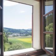 gruenersalonfensterbentz